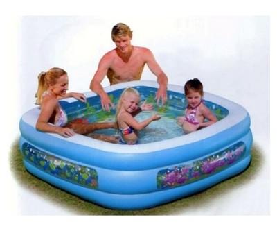 Clearview Aquarium Pool (57471)